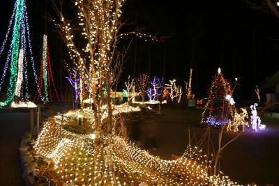 あづみ野公園 ライトアップ